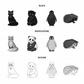 Fox, Panda, Hedgehog, Penguin And Other Animals.animals Set Collection Icons In Black, Monochrome, O poster