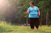 Overweight woman walking on forest trail. Slimming and active lifestyle theme.  poster
