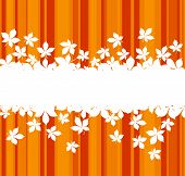 image of fall leaves  - Autumnal leaves background with frame for seasonal design - JPG