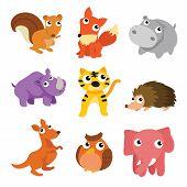 Animals Character Design, Animals Collection, Animals Wildlife poster