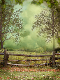 picture of fantasy landscape  - Fantasy and dreamy landscape in the forest - JPG