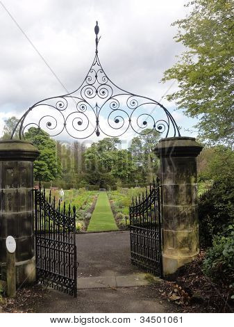 The sicret garden