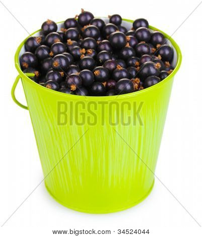 Black currant in metal bucket isolated on white