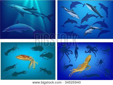 Ilustración con el conjunto de la composición de la vida marina