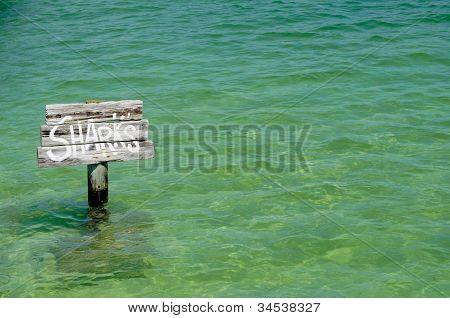 Sharks Sign