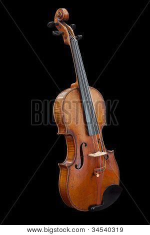 violoncello isolated under the dark background