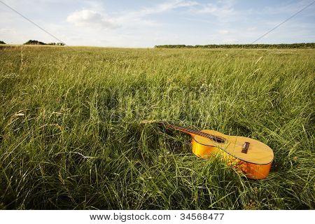 Wooden Guitar Lying In Grassy Field