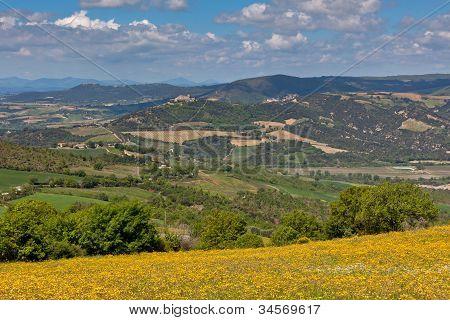 Tuscan Hills Landscape