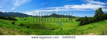 Rolling Green Meadow