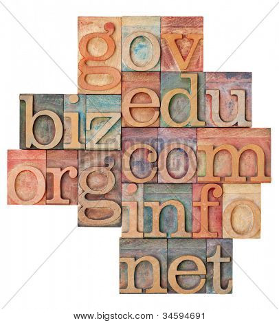 collage of popular internet domain extensions (org, biz, gov, net, info, edu, com) - vintage letterpress wood type, stained by color inks, isolated on white