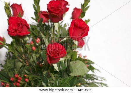 Dozen Of Red Roses