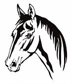 Decorative Monochrome Contour Portrait Of Horse With Long Mane Looking In Profile, Vector Illustrati poster