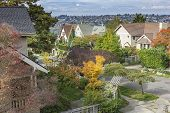 Residential Neighborhood And Fall Colors Seattle Wa. poster
