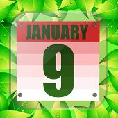 January 9 Icon. Calendar Date For Planning Important Day With Green Leaves. January Ninth. Banner Fo poster
