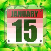 January 15 Icon. Calendar Date For Planning Important Day With Green Leaves. Fifteenth Of January .  poster