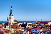 Overview Of Old City, Tallinn In Estonia Taken From The Overlook In Toompea Showing The Town Walls A poster