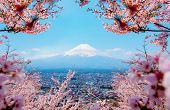 Fuji Mountain Landsapce. Travel And Sightseeing In Japan On Holiday. Sakura Flower In Spring And Sum poster