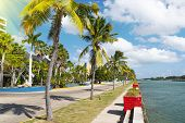 Asphalt Road Along Tropical Coastline With Palm Trees And Buildings On A Side. Walking Path On The W poster