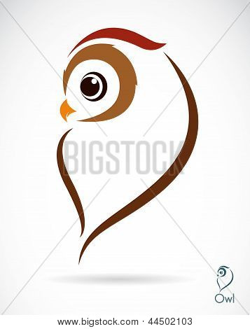 Vector image of an owl