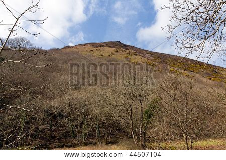 View of Peter Rock from Heddon Valley Exmoor