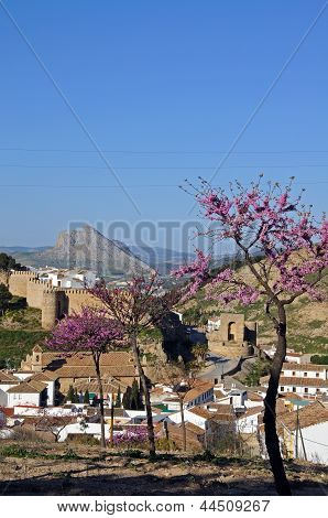 Town with pink blossom, Antequera, Spain.