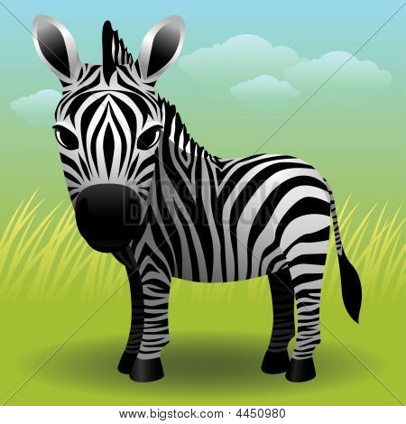 Baby Animal Collection: Zebra
