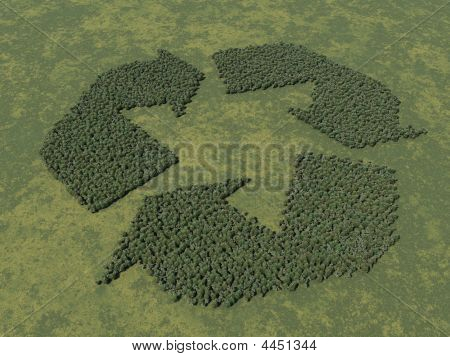 Recycle Logo In Trees