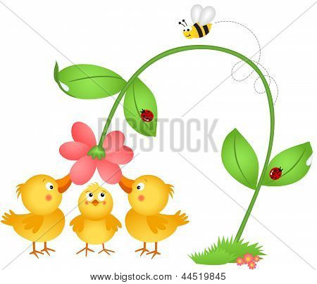 Little chicks admiring a flower