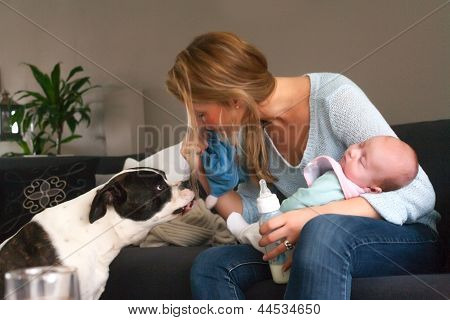 Baby Sleeps And The Dog Isnt