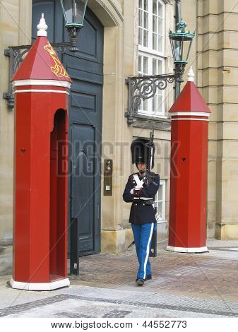 Royal Guard guarding Amalienborg Castle in Copenhagen, Denmark