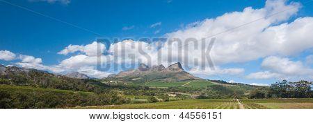 The Stellenbosch Wine Lands Region Near Cape Town..