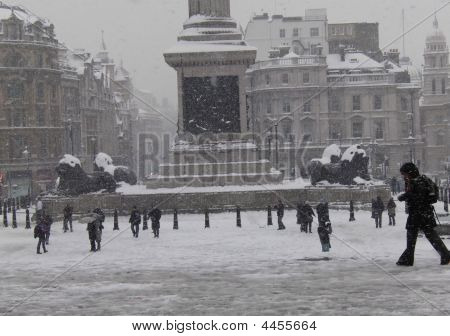 Trafalgar Snow Lions