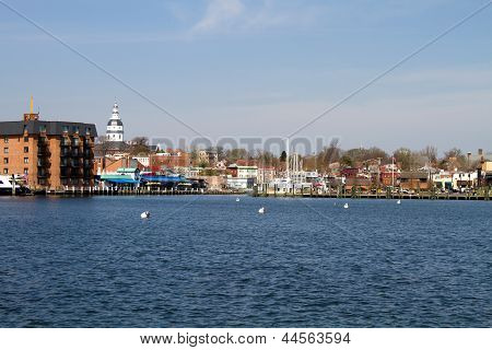 Annapolis City Skyline
