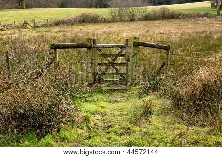 Closed Old Rustic Gate In Green Grassy Countryside