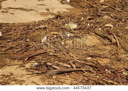 Waste Environmental Damage At Beach