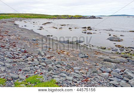 Rocky Beach On A Barren Coast In Newfoundland