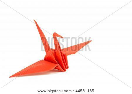 Bird in origami