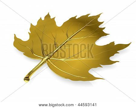 Golden Maple Leaf On White Background