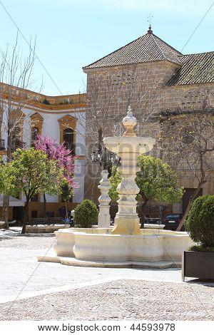 Spring In Plaza Mayor De Osuna, Spain