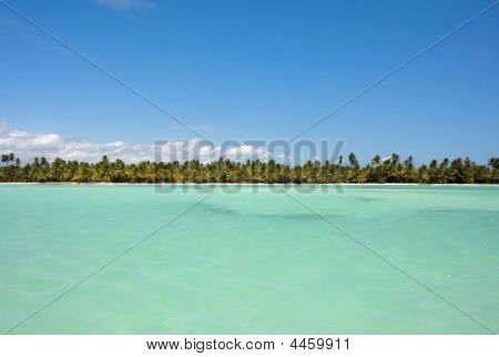 Caribbean Horizon