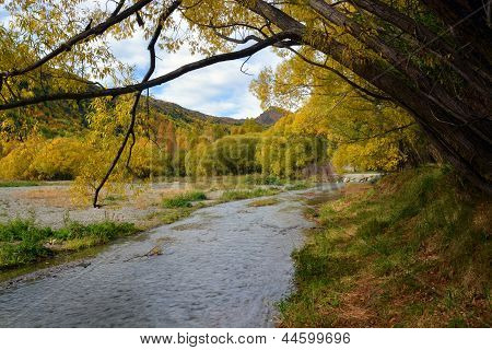Arrowtown River In Autumn, New Zealand