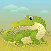 Baby Animal Collection: Crocodile poster