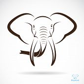 stock photo of indian elephant  - Vector image of an elephant head - JPG