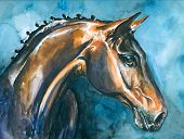 stock photo of reining  - Hand painted portrait of horse - JPG