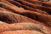 foto of rich soil  - A badlands   - JPG