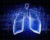 picture of respiration  - Schematic illustration of human lungs with the different elements on a colored background - JPG