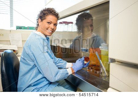 Side view portrait happy female researcher with petridish working in laboratory