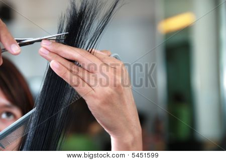 Portrait Of Salon Staff Working On Human Hair