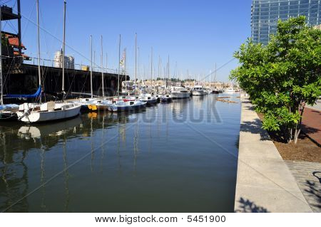 Yachts Are Berthed