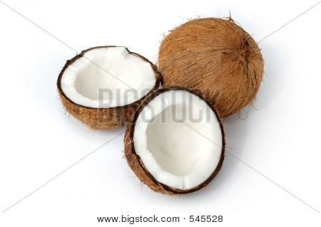Coconut Still Life Isolated